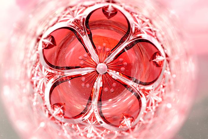 玉菊桜2.jpg